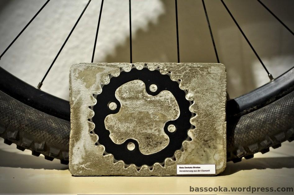Eine aus der Eisenzeit stammende Versteinerung eines Rota Dentata Birotae