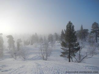 Schneeschuhwanderung, Schweden