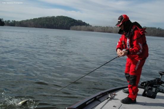 Escolher a cana adequada para cada situação é mais fácil na pesca embarcada
