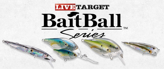 Koppers Live Target BaitBall – novidade amostras 2014