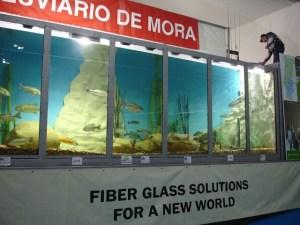 Visão geral do aquário de achigãs, com Jaime Sacadura ao fundo a trocar de cana durante a demonstração de pesca ao achigã