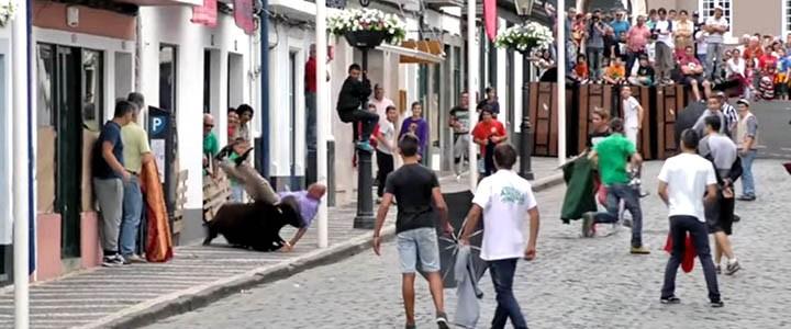Fundos públicos e crianças usados para promover as touradas nos Açores