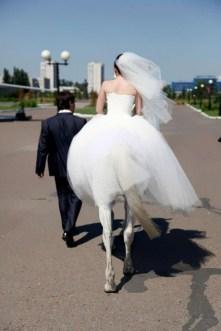 Che cavalla che ti sei sposato!