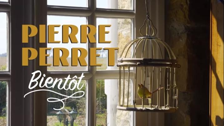 Bientôt, le grand retour de Pierre Perret
