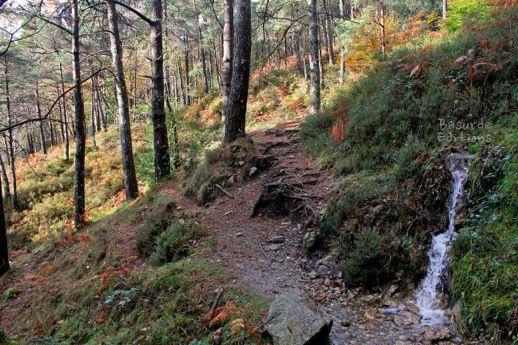 En el camino aparecen varios arroyos.