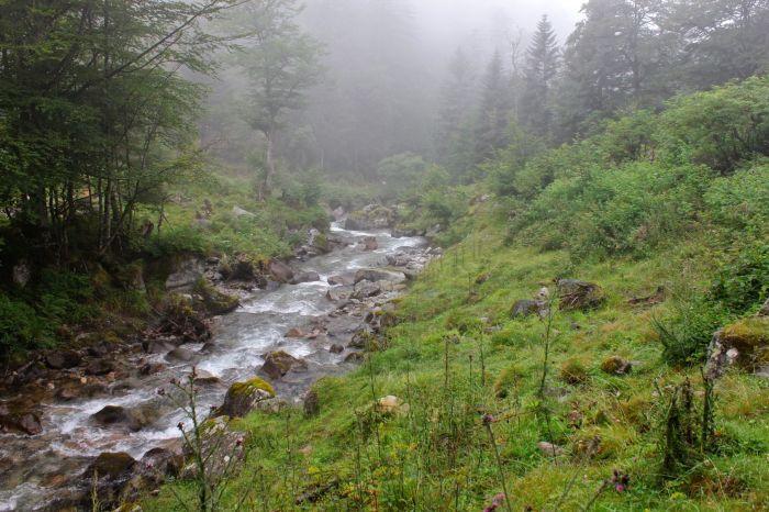 El camino sigue el curso del arroyo de Lutour.