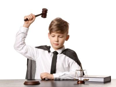 The Child's Advocate