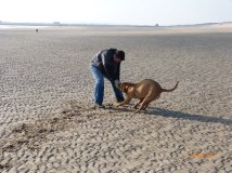 Toff on Camber (4)