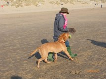 Toff on Camber (7)