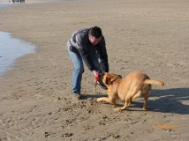 Toff on Camber
