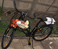 Cu bicicleta la piata