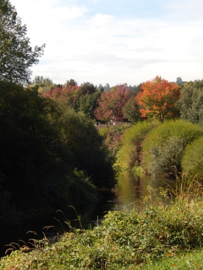 Fall has come to Green River