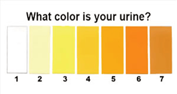 7-Urine-Colors-That-Can-Tell-You-Important-Things
