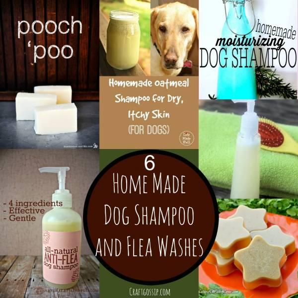 home-made-dog-shampoo-wash-flea-protection-care-dry-skin