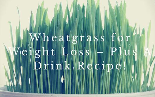Wheatgrass-Benefits-Recipes-How-to-Grow11