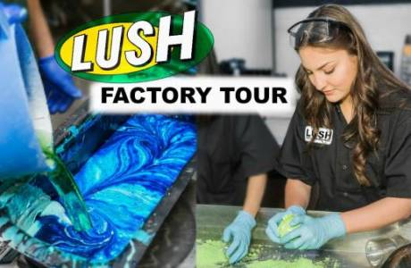 Ever Wanted To Step Inside A Lush Factory?