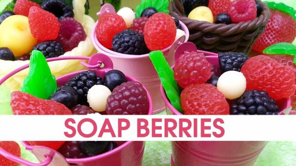 Soap Making Soap Embeds