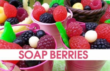 Soap Making – Soap Embeds
