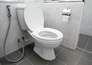 Best Skirted Toilets