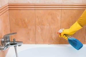 Best Bathroom Tub Cleaner