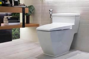 eago toilet
