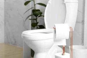 Best Macerator Toilet