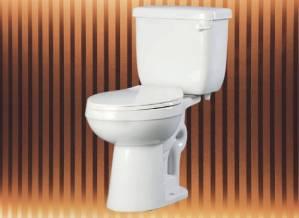 Best Proflo Toilet
