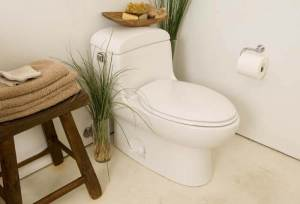 Best Self Cleaning Toilets