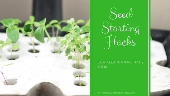 seed starting hacks tips and tricks