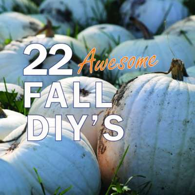 22 Amazing DIY Fall Decorating Ideas that you can do Right Now!