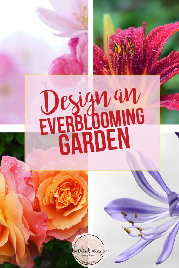 You can design a garden with flowers that bloom all year. This guide will give you Perennials for each season that will bloom all season. #perennialgarden #gardendesign #everbloominggarden