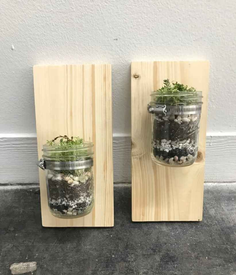 Two mason jars mounted to a wooden board.