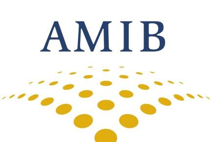 Resumen Presentación Arturo Herrera Encuentro AMIB 2018
