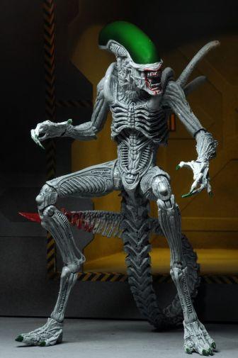 NECA - 2019 Convention Exclusives - Batman vs Alien 2-Pack - 20