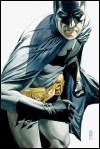 BatmanGuide50646
