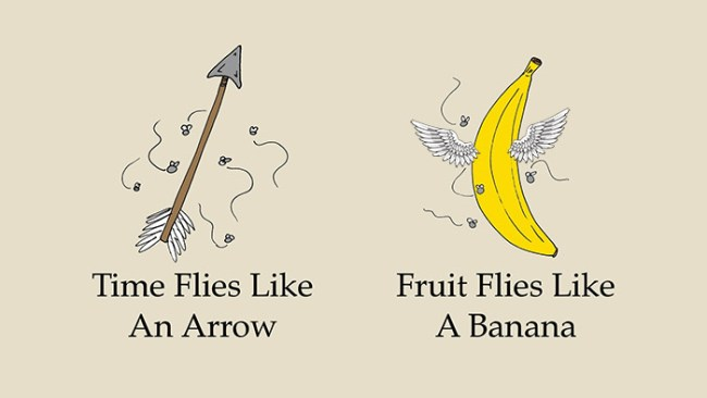 time-flies-like-an-arrow-fruit-flies-like-a-banana