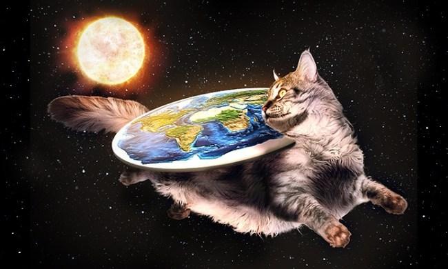 flat earth cat