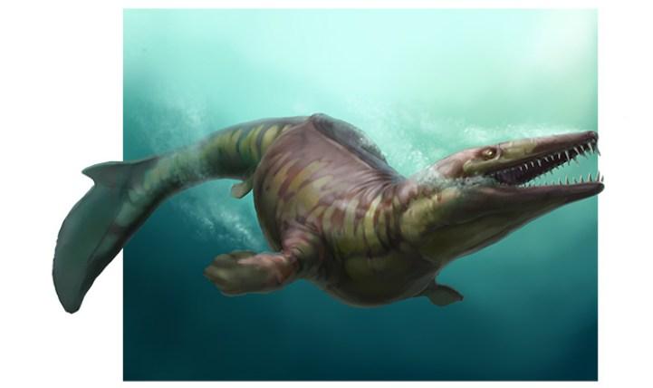 неомозазавр