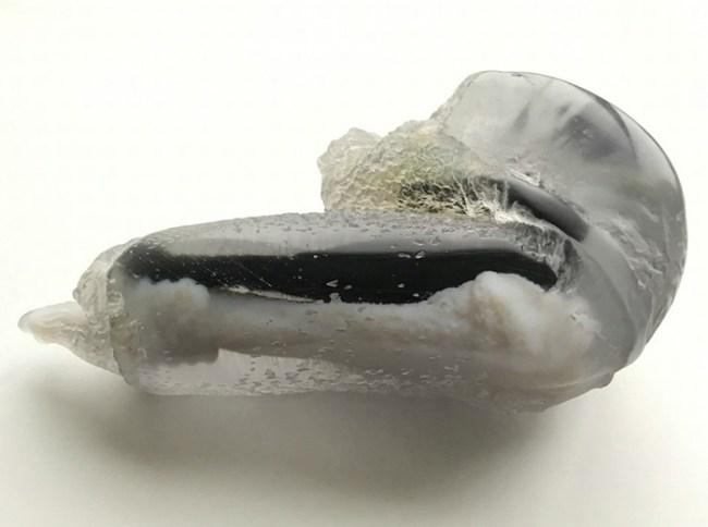 mouse-penis-3d-model