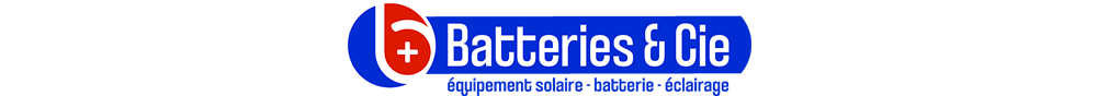 logo-batteries-et-cie-picto-centre-4