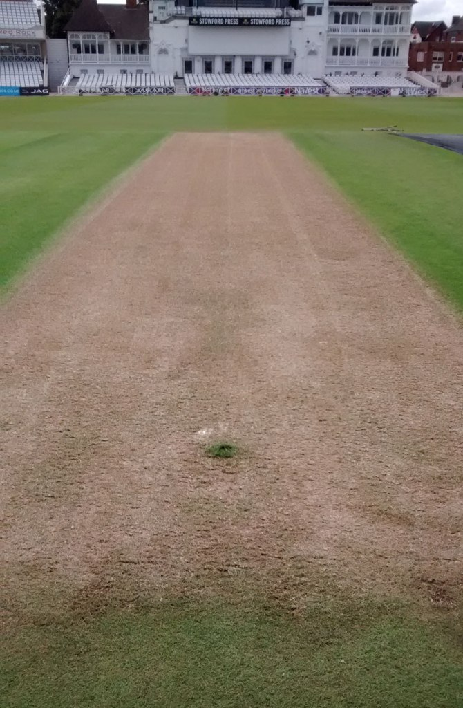 """""""Looking at the surface, it has looked like a decent bat-first wicket"""""""