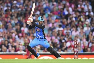 Alex Carey 83 Adelaide Strikers Sydney Sixers BBL cricket