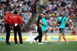David Warner Chris Lynn dislocated shoulder Australia cricket