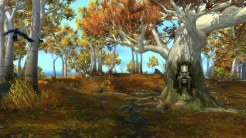 The Runewood