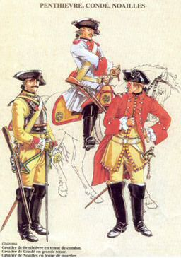 French Cavalry Uniform