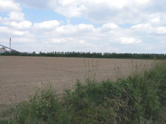 Photograph No3. The ground on the outskirts of Fontenoy at approximately the position of the left flank of the Allied attacking column.