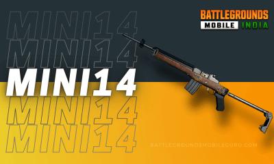 BGMI Mini14 Weapon