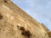 Moon over the Kotel.  If I forget thee, O Jerusalem