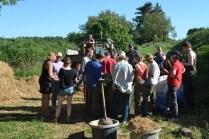 ecotopia-strawbale-workshop-sweden-2017-29