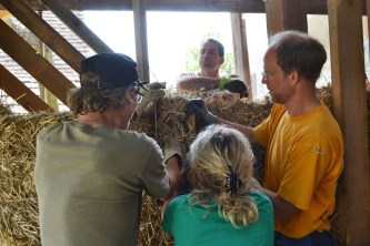 strawbale-workshop-4-2018-16